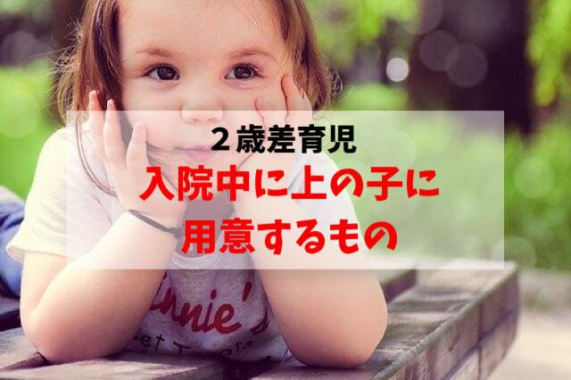 f:id:nisaisa-ikuzi:20200326125146j:plain